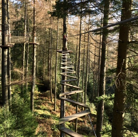 Go Ape - Tree Top Adventure